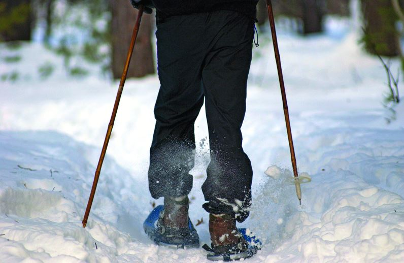 Snowshoeing on a trail