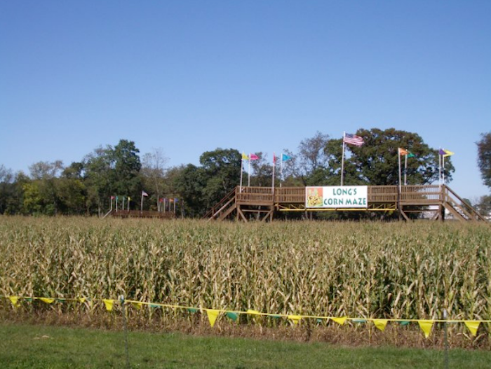 Long Family Orchard and Cider Mill in Commerce Township