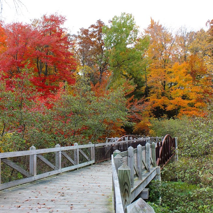 Trail in Grand Haven during Fall