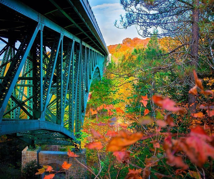 Cut River Bridge in forest during fall